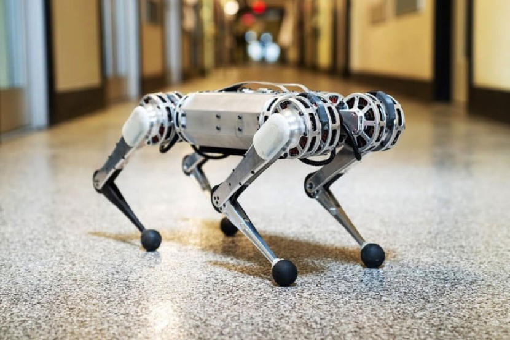 Mini Cheetah: Το πρώτο τετράποδο ρομπότ που κάνει ανάποδες τούμπες