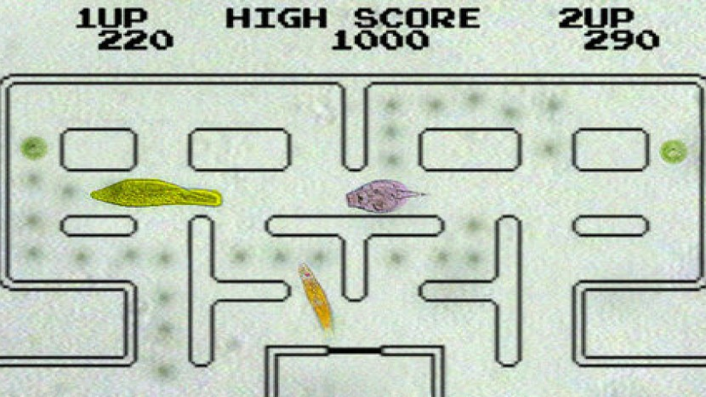 Pac-Mecium: Το πραγματικό Pac-Man με μικροοργανισμούς!