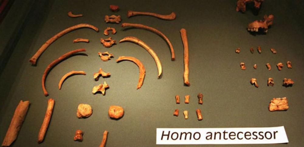 Αρχαιολόγοι ανακάλυψαν το αρχαιότερο καταγεγραμμένο απολίθωμα ανθρώπινου σκελετού