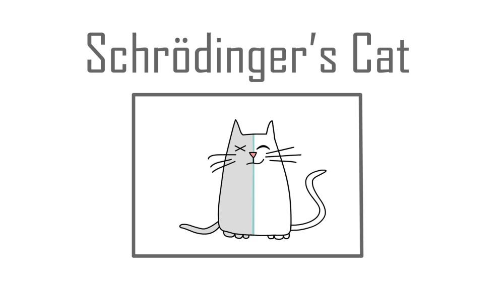 Schrödinger's Cat: Μάθε για το περίφημο θεωρητικό πείραμα από το animation video-εξήγηση του TED-Ed