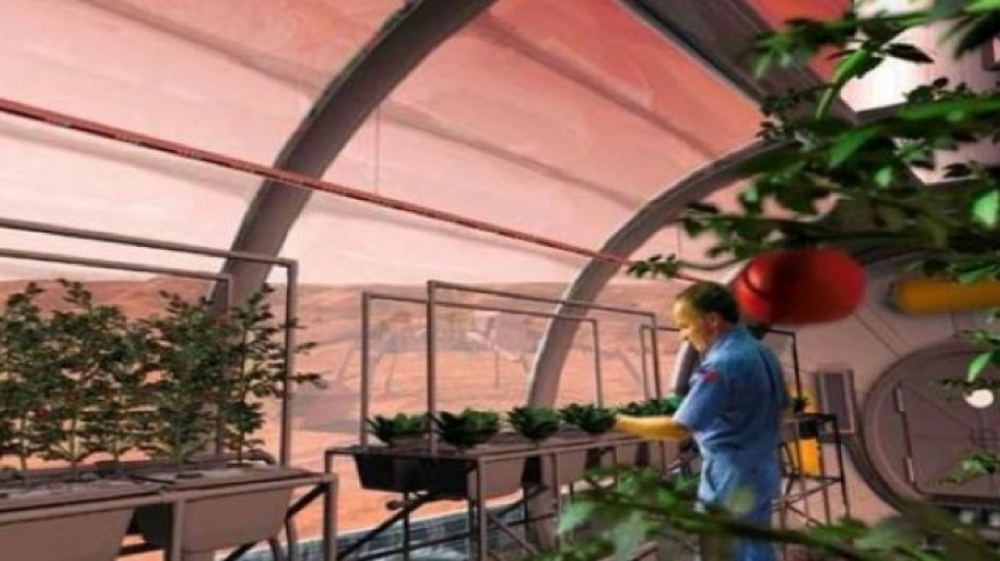 H NASA σχεδιάζει να φυτέψει λουλούδια και λαχανικά στο Φεγγάρι!